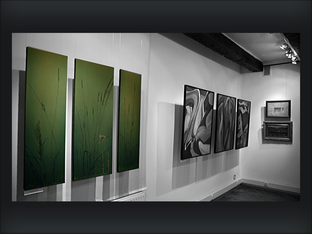 5 Galernicy Dom Muz Toruń 2014