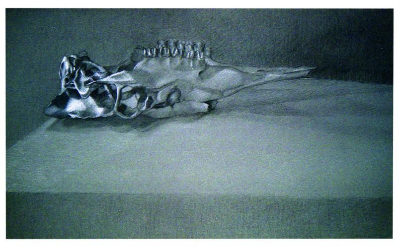 czarna ibiała kredka 100x 60 cm 1999
